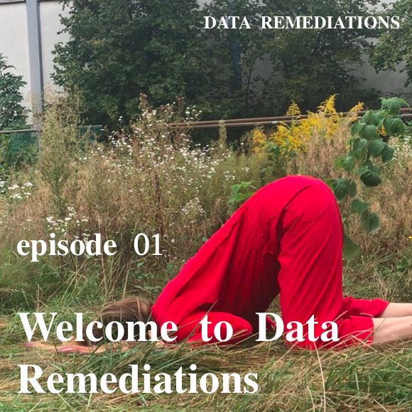 Data Remediations Podcast