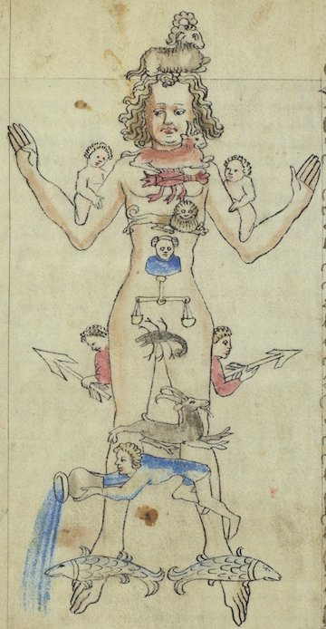Zodiac man from an astronomical and medical miscellany. Kislak Center for Special Collections, Rare Books and Manuscripts, LJS 463, folio 54v.