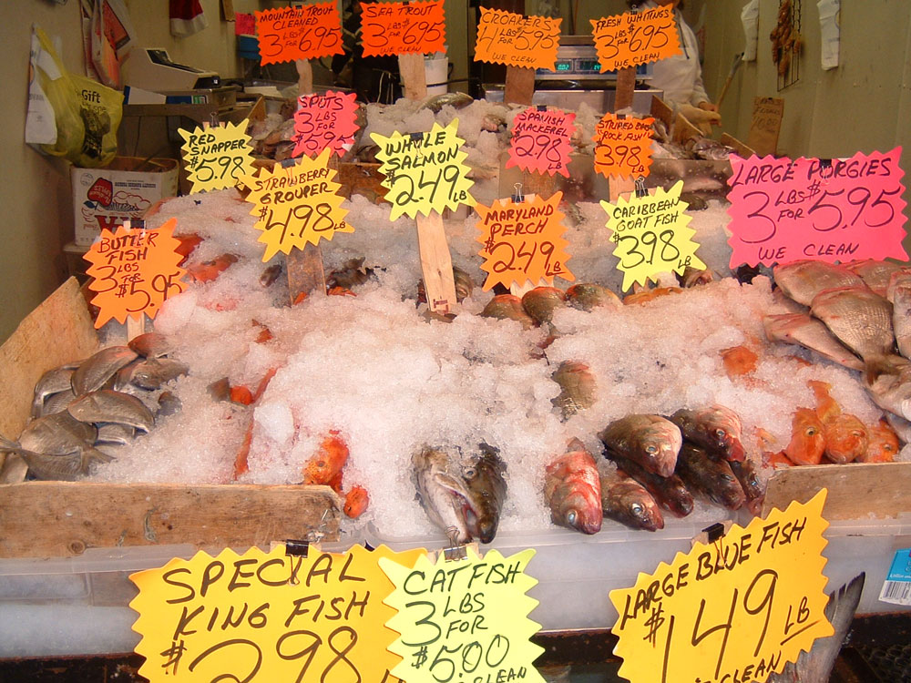 a market display of fish with piles of shaved ice and brightly colored price tags