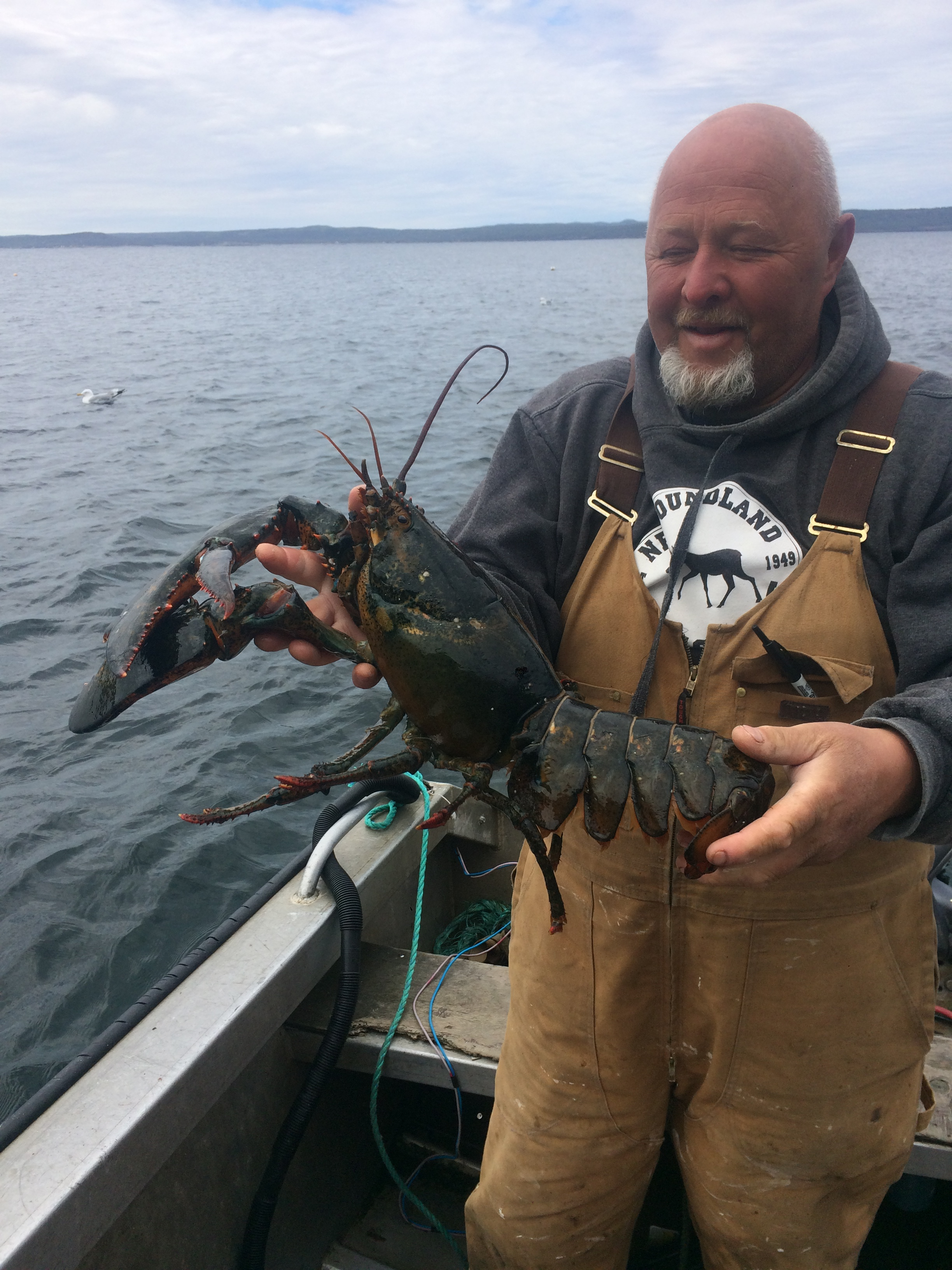 Jerry holding a lobster on his boat