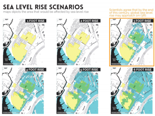 Sea Level Rising Images