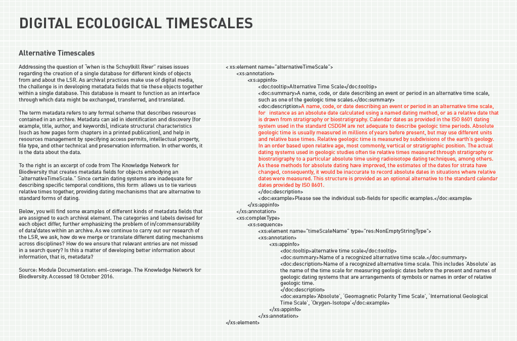 Digital Ecological Timescales