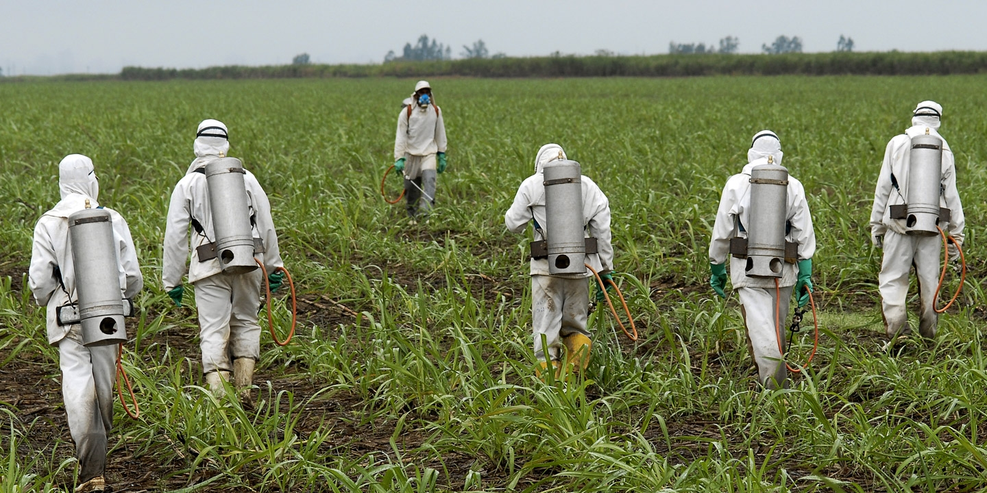 Chemical sprayers in a field