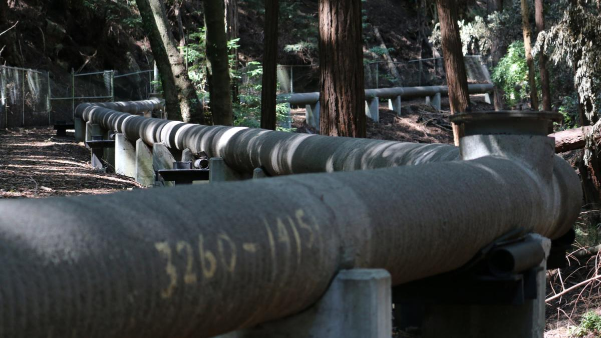 Wastewater pipes run through hidden gulches along the route of the Santa Cruz Wastewater Walk, 20115. Photo by FICTILIS.