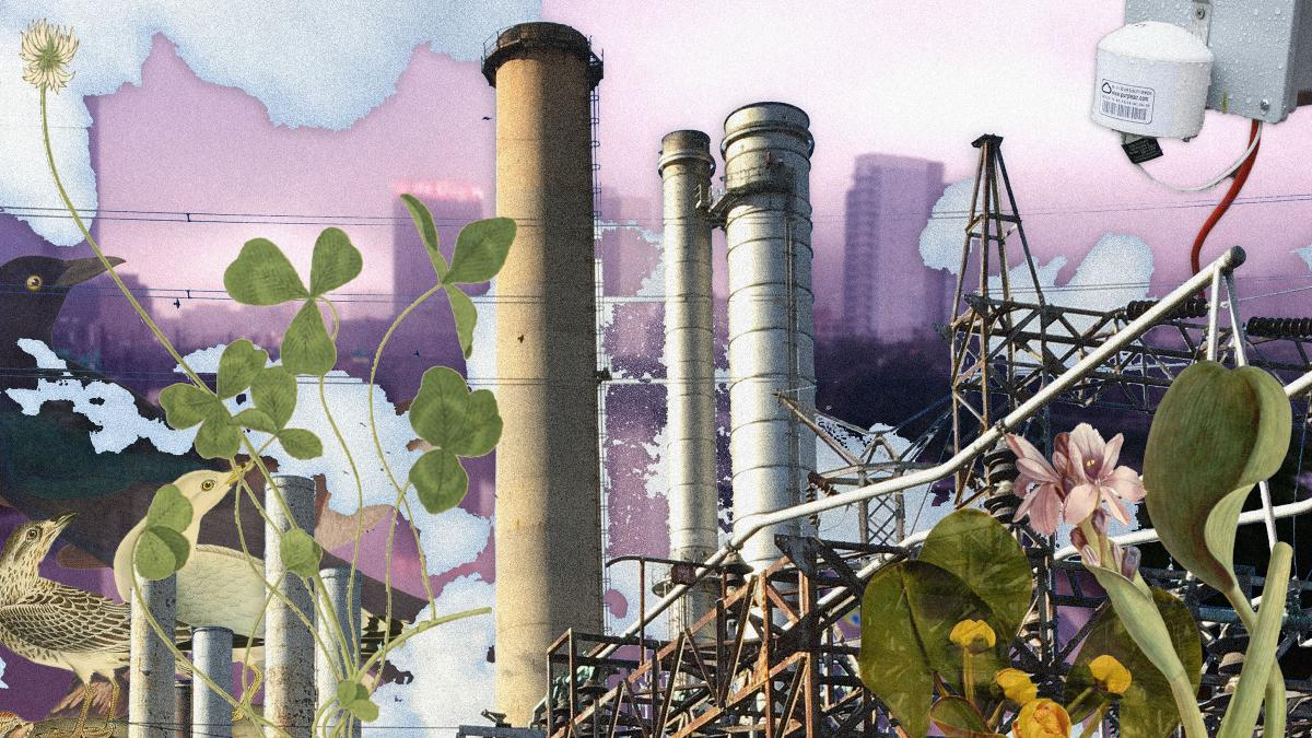 composite image with oil refinery, local plants, and purple haze air quality monitor against a purple backdrop