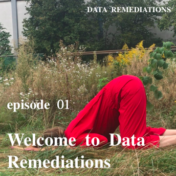 Welcome to Data Remediations
